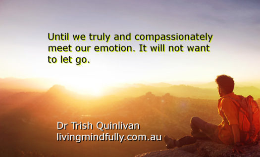 Truly and compassionately meet Emotion